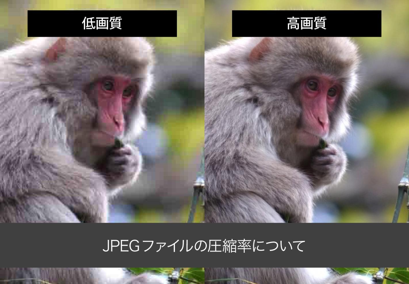 JPEG画像の圧縮率